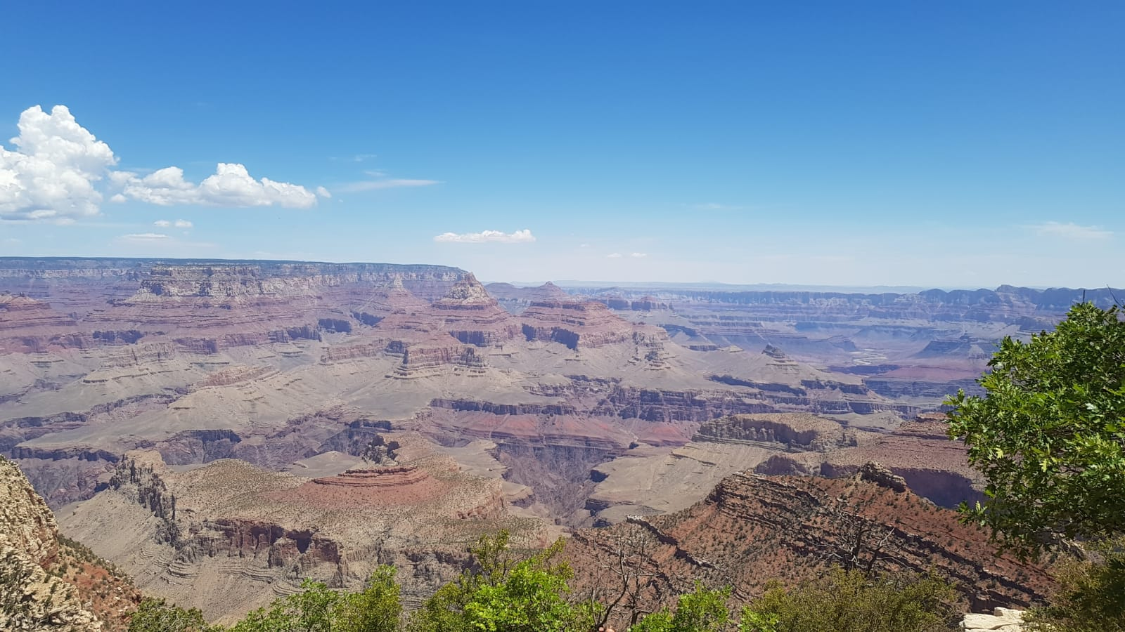 Panorama vom Grand Canyon