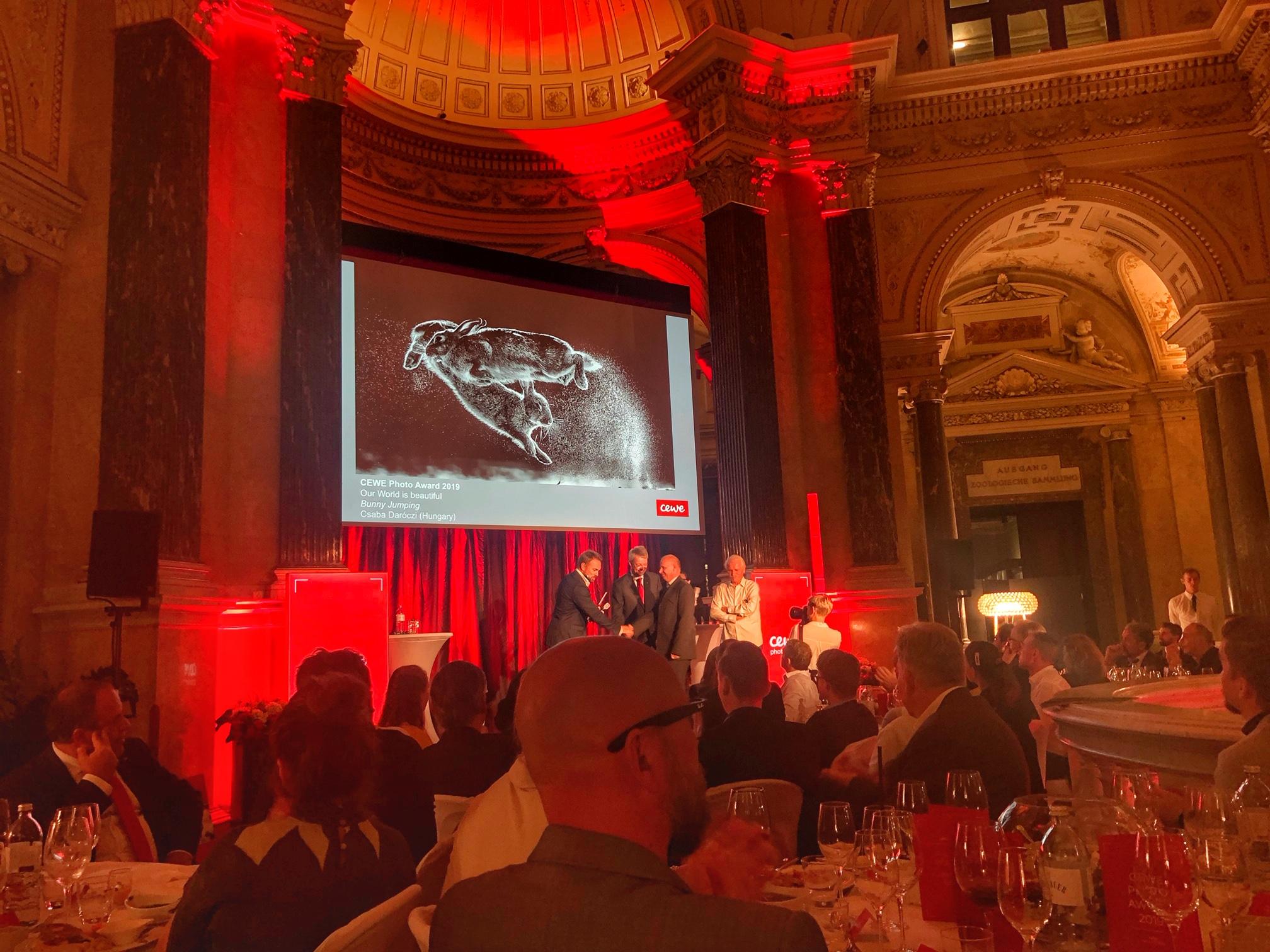 CEWE Photo Award Hasen