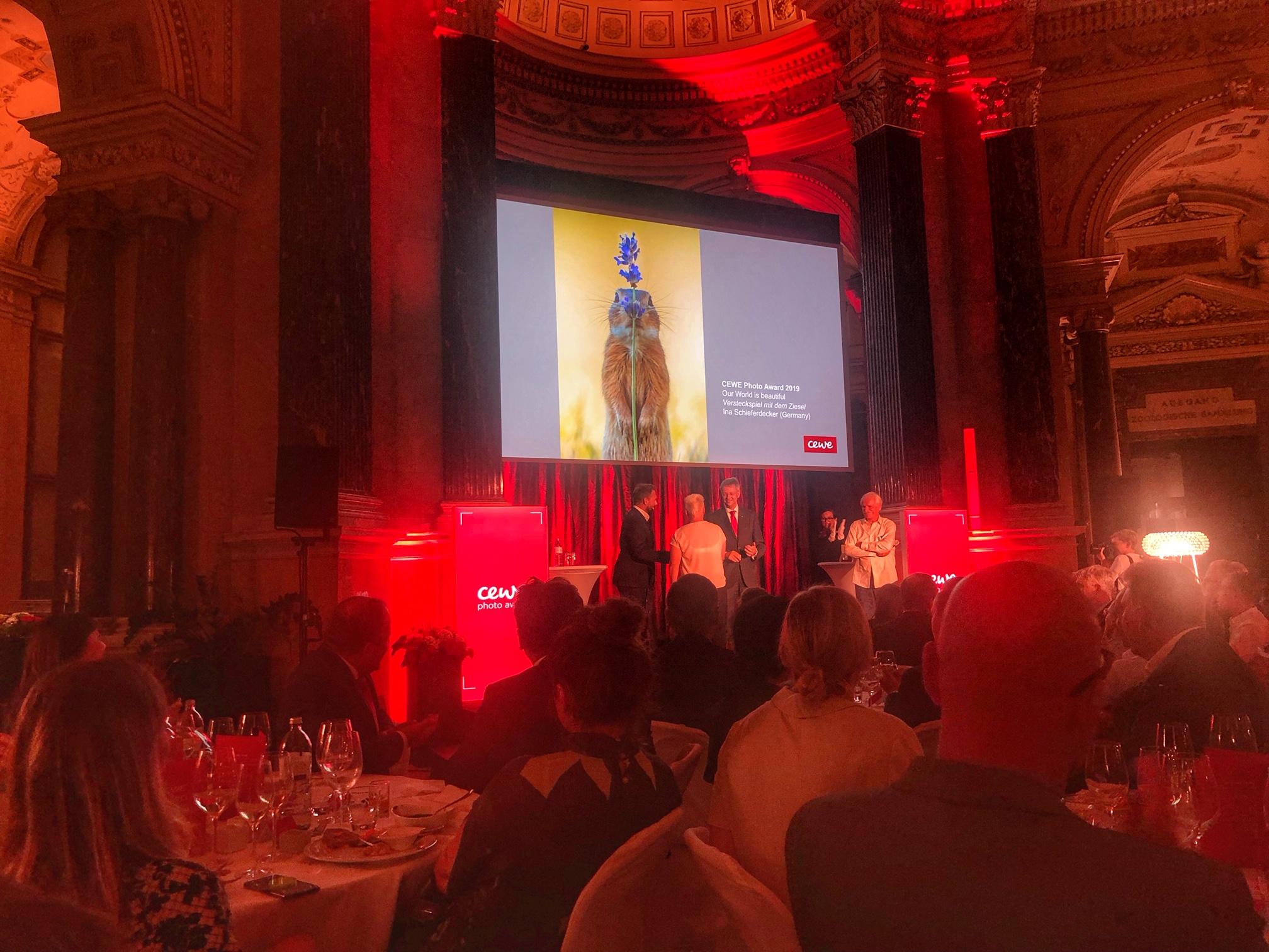 CEWE Photo Award Ziesel
